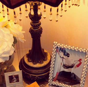 Turn Your Home Into a Naughty Oasis | Naughty LA